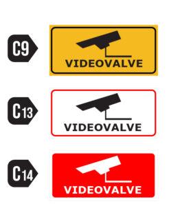 Videovalve